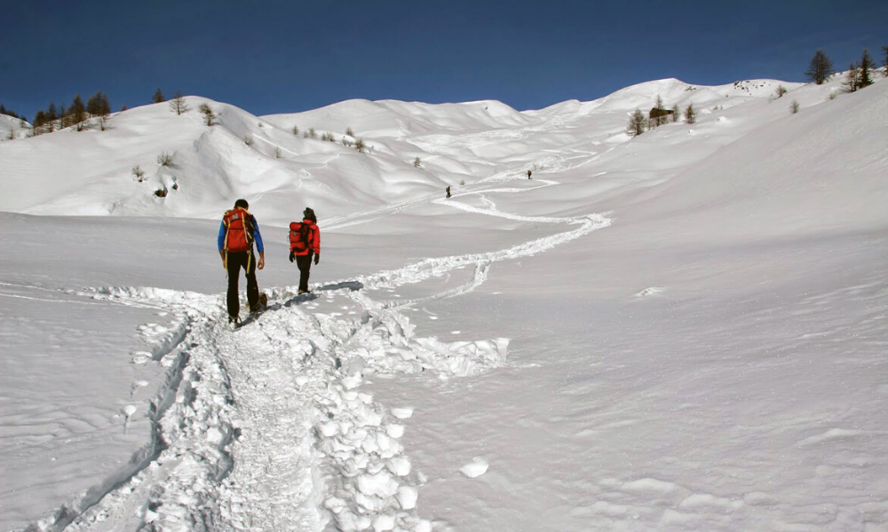 Snowshoeing in Pila