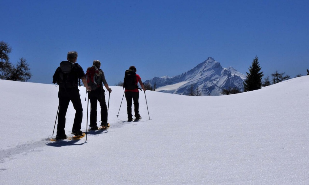Snowshoes in the basin of Pila