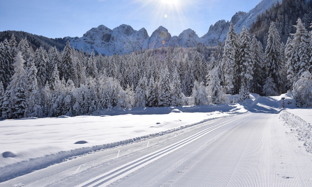 Cross-country skiing in Tarvisio